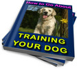 Thumbnail How to Go About Training Your Dog PLR Reports
