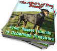 Thumbnail Dog Breeds: Basset Hounds to Doberman Pinschers PLR Reports