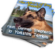 Thumbnail Dog Breeds: German Shepherds to Yorkshire Terriers (PLR)
