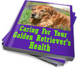 Thumbnail Caring For Your Golden Retrievers Health PLR Reports