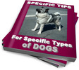 Thumbnail Dog Training: Specific Tips for Specific Types of Dogs