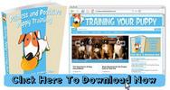 Thumbnail Puppy Training Niche Wordpress Blog