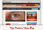 Thumbnail Eye Floaters Niche Blog