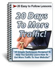 Thumbnail 20 Days to More Traffic - PLR Newsletter