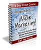 Thumbnail Intro to Niche Marketing PLR Newsletter Series