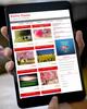 Thumbnail Picpro Wordpress Theme Developer License