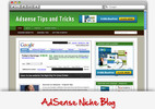 Thumbnail Adsense Niche Blog - Video Installation Tutorials Included