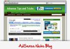 Thumbnail Adsense Niche Blog - Video Installation Tutorials Included