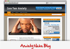 Thumbnail Anxiety Niche Blog - Video Installation Tutorials Included