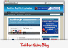 Thumbnail Twitter Niche Blog - Video Installation Tutorials Included