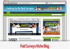 Thumbnail Paid Surveys Niche Blog - Video Tutorials Included
