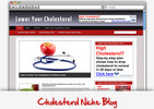 Thumbnail Cholesterol Niche Blog - Highly Optimized Blogs