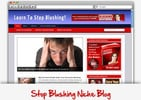 Thumbnail Stop Blushing Niche Blog - Highly Optimized Blogs