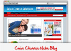 Thumbnail Colon Cleanse Niche Blog - Highly Optimized Blogs