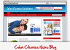 Thumbnail Colon Cleanse Niche Blog - Highly Optimized Blogs