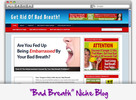 Thumbnail Get Rid of Bad Breath Niche Blog - Highly Optimized WP Blogs