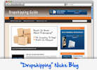 Thumbnail Dropshipping Niche Blog - Highly Optimized WP Blogs