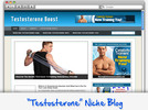 Thumbnail Testosterone Boost Niche Blog - Highly Optimized WP Blogs