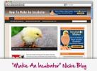 Thumbnail How To Make An Incubator Niche Blog