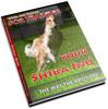 Thumbnail Shiba Inu Secrets - How To Keep Your Shiba Inu Healthy