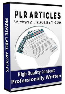 Pay for 25 Auto Sound Systems Plr Articles