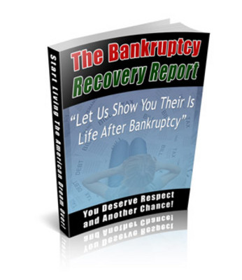 Pay for Bankruptcy Recovery Niche Package With MRR
