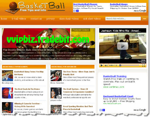 Pay for Basketball Wordpress Blogs + Review Sites (3 Income Streams - Adsense, Amazon, Clickbank)