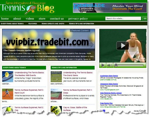 Pay for Tennis Niche Wordpress Blogs (3 Income Streams) + Review Sites