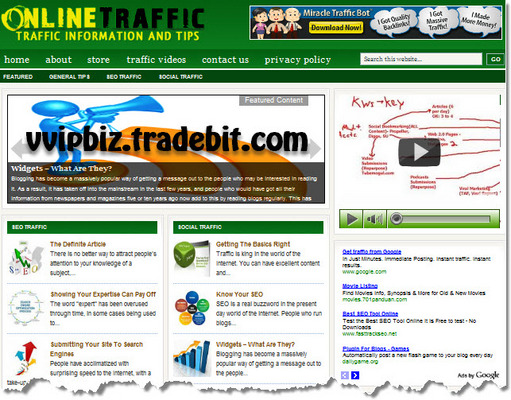 Pay for Online Traffic Niche Wordpress Blogs (3 Income Streams) + Review Sites