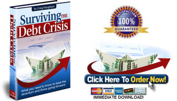 Pay for Surviving the Debt Crisis - How to Beat the Bailout!