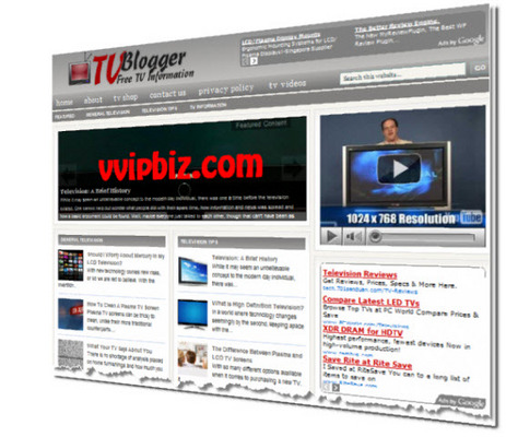 Pay for TV Television Niche Wordpress Blogs + Review Sites