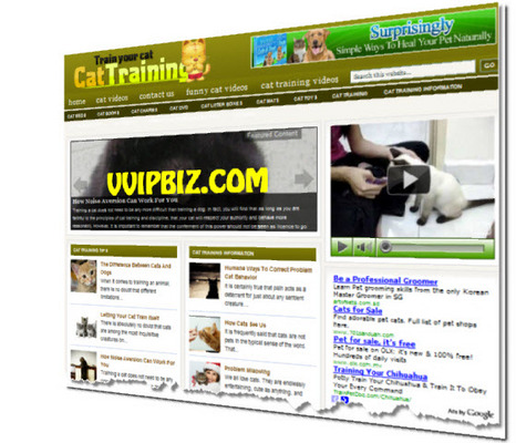 Pay for Cat Training Wordpress Blogs + Review Sites (3 Income Streams)