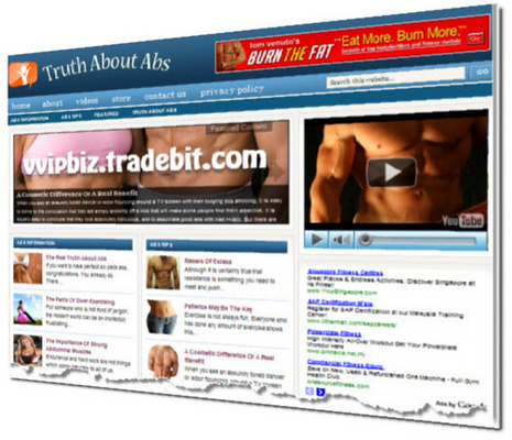 Pay for Truth About Abs Niche Wordpress Blogs Adsense/Amazon/Clickbank