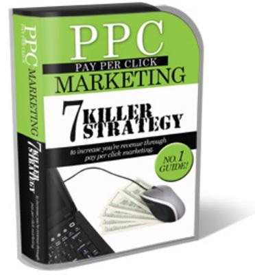 Pay for PPC Pay Per Click Marketing PLR Mini Site Templates