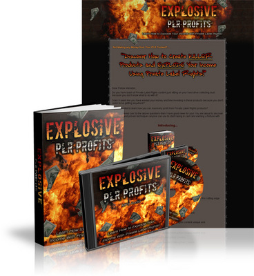 Pay for Explosive PLR Profits MRR - eBook and Audio