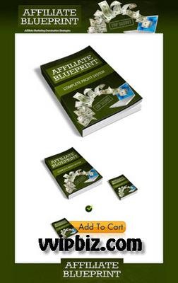 Pay for Affiliate Marketing Plr Minisite Templates & PLR Ebook Packs