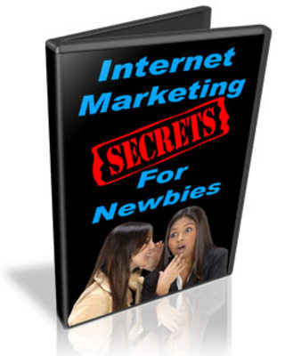 Pay for Internet Marketing Secrets For Newbies Video Series - MRR