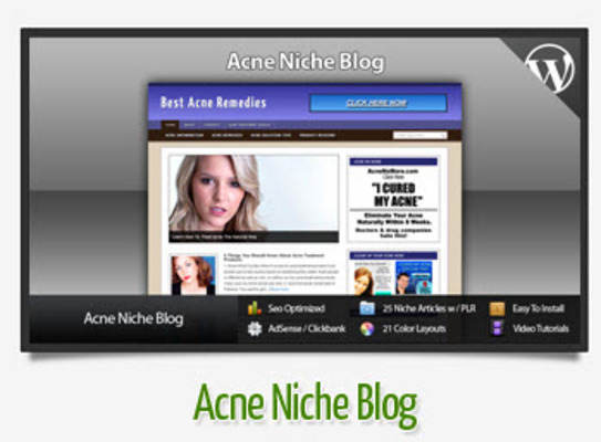 Pay for Acne Niche Blog With Instructional Videos
