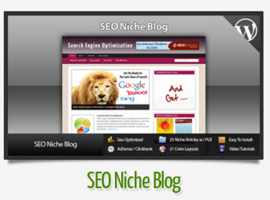 Pay for Search Engine Optimization Niche Blog Instructional Videos