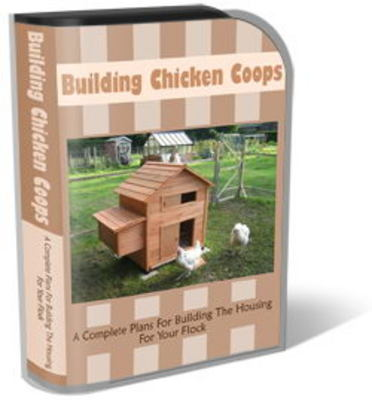Pay for Chicken Coops Website Template PLR Pack