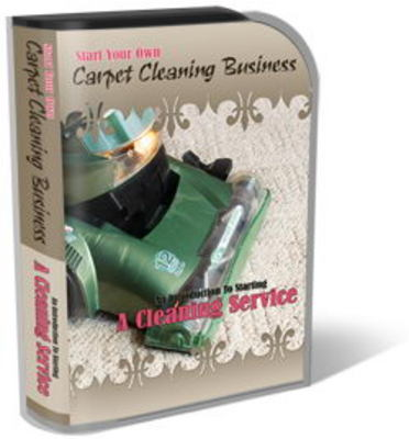 Pay for Carpet Cleaning Website Template PLR Pack