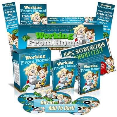 Pay for Working From Home Mini Site Web Template MRR
