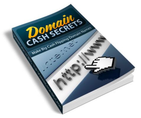Pay for Domain Cash Secrets PLR Ebook - Domain Flipping
