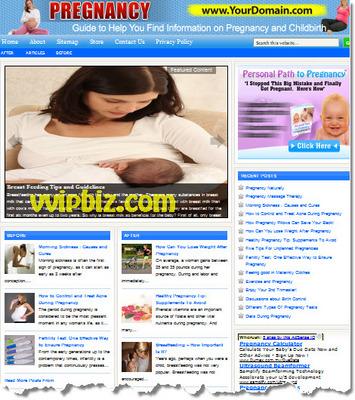 Pay for Pregnancy Website PLR - WordPress Health Niche Blogs