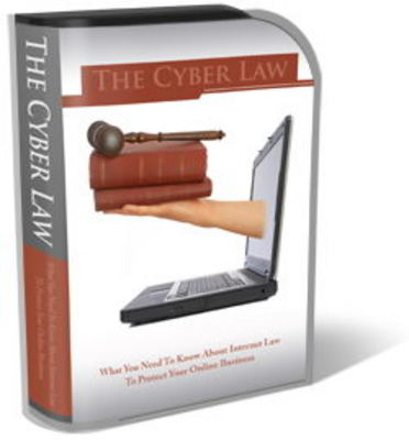 Pay for Cyber Law Website Template Plr Pack