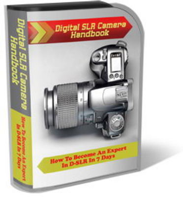 Pay for Digital SLR Camera Website Template Plr Pack