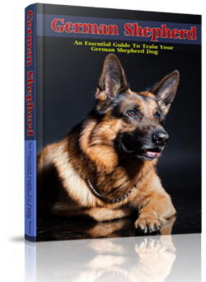 Pay for German Shepherd Website Template Plr Pack