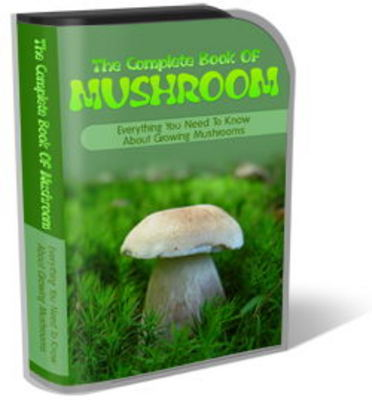 Pay for Mushroom Website Template Plr Pack