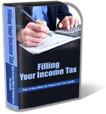 Pay for Income Tax Website Templates With Private Label Rights