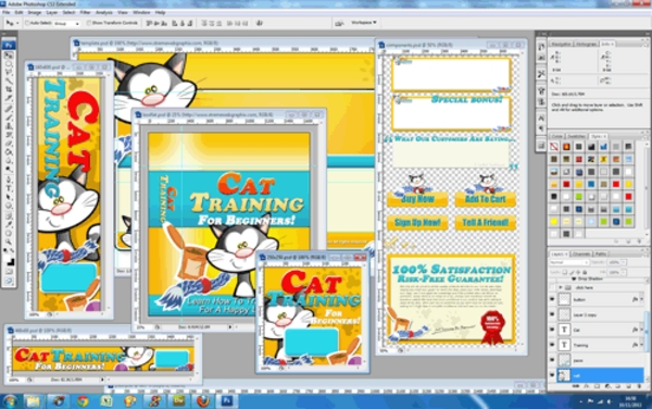 Pay for Cat Training Niche Website Template - PSD Included